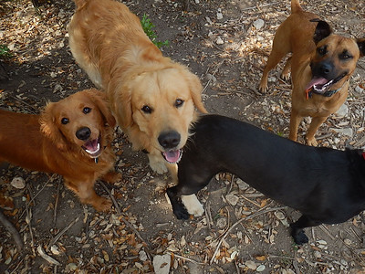 More happy faces!_ Berkeley, Brodie W, Molly H, Lucy R
